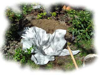 fosse de plantation garnie d'un feutre à remplir de terre de bruyère