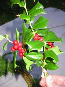 Une couronne décorative naturelle pour Noël - 2e partie